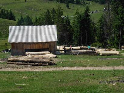 Sägewerk in den Karpaten.