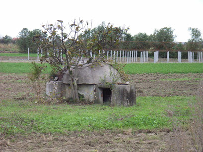 Bunker überall
