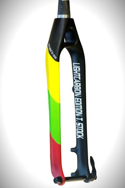 "Carbon Gabel MTB Mountainbike Starrgabel Rigid Fork Carbon Fork Steckachse Thru Axle Gabel für Specialized Focus Stevens Merida Cube Haibike Trek Cannondale Scott 29"""