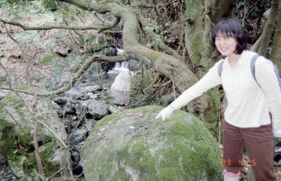 地蔵の礎石。岩に円い穴がある(99年)