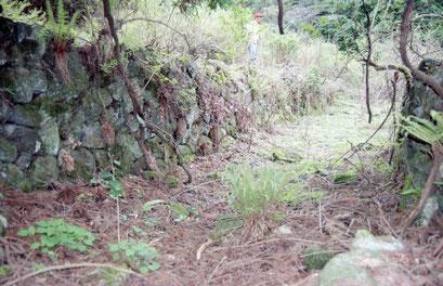 トロッコ用線路の石垣(99年)