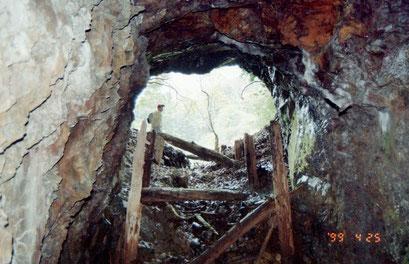 「大通洞坑」の奥から入口を見る(99年)