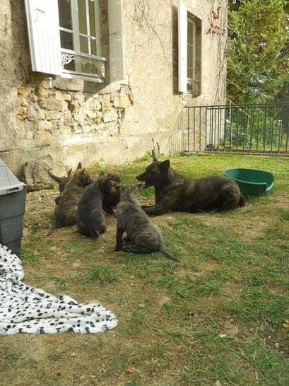 mam Dido vertelt over het leven buiten het puppiepark