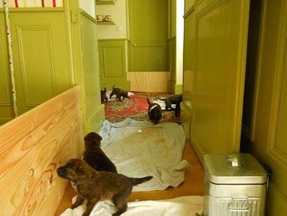 ruimte in huis wordt groter