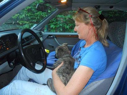 in de auto..
