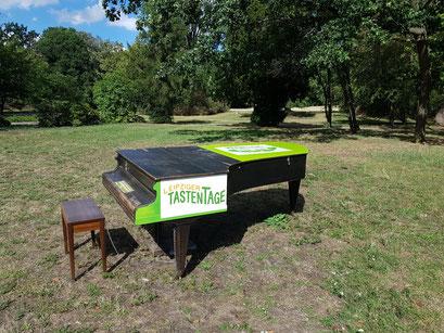 UNITAS gesponserter Standort Schönauer Park