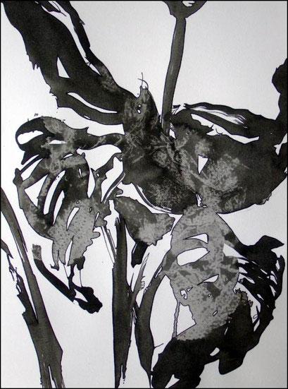 14. Exercices spirituels, encre de chine sur papier, 24 x 32 cm.
