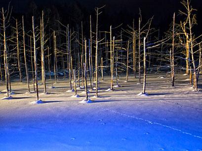 厳寒の北海道8日間の撮影旅行01