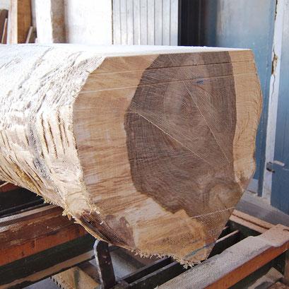 geschälter Nussbaum-Stamm, zum Sägen vorbereitet, Querschnitt mit kräftiger hell-dunkler Maserung