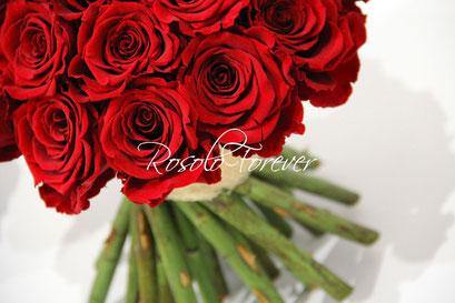 ROSOLO FOREVER: Bouquet de roses éternelles / 4 tailles différentes