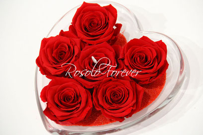 ROSOLO FOREVER: 6 belles roses éternelles, dans une coupe en verre