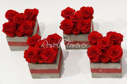 ROSOLO FOREVER: caisson de roses éternelles / 5 grandes roses