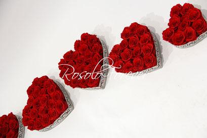ROSOLO FOREVER: beau cœur de roses éternelles / 9, 15 ou 21 roses