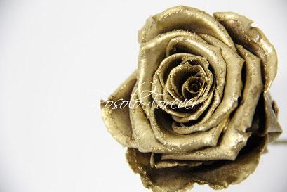 ROSOLO FOREVER: la rose d'or. Une belle, vraie, rose éternelle, sur tige naturelle
