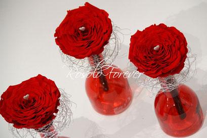 ROSOLO FOREVER: une grande rose XXL dans un vase en verre / rouge vif
