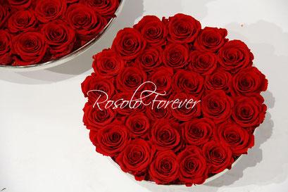 ROSOLO FOREVER: Roses éternelles sur un plateau, 2 tailles