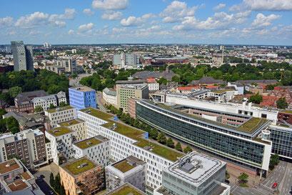 Grünes Hamburg...selbst auf den Dächern