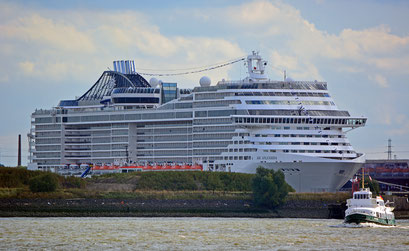 MSC SPLENDIDA am HCC Steinwerder