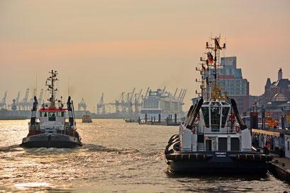 ANTHEM OF THE SEAS läuft im Hamburger Hafen ein zum Eindocken in DOCK ELBE 17 am 23.03.2015