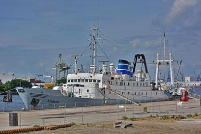 STUBNITZ (ehemaliges DDR-Kühlschiff) im Baakenhafen