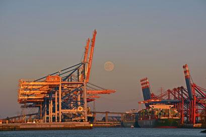 Hafen am 12.06.2014