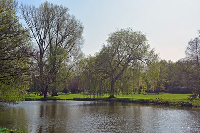Außenalster/Alsterpark im Frühling