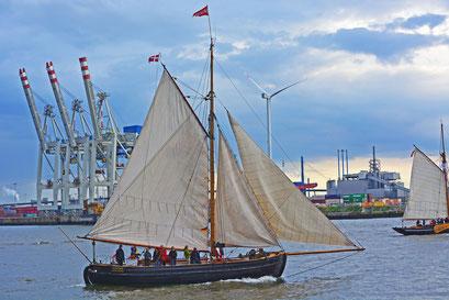 VIKING zur Parade Hamburger Traditionsschiffe am 23.08.2014