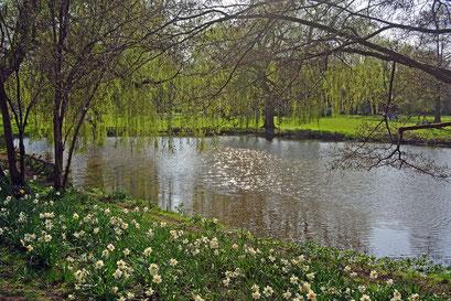 Außenalster/Alösterpark im Frühling