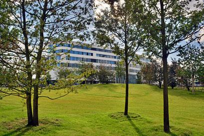 Blick über den Lohsepark auf die HafenCity Universität