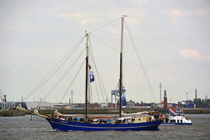 ZEPHYR zur Einlaufparade beim 826.Hamburger Hafengeburtstag am 08.05.2015