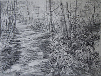 Waldweg,Grafit und Kohle 36x48cm