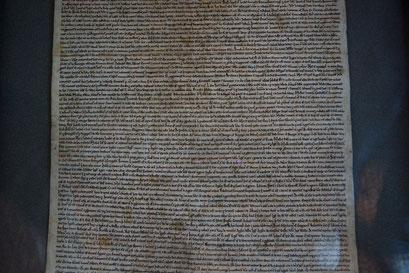 Salisbury - Cathedral; die Magna Charta: Eines der letzten vier Originale