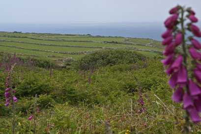 Ein Blick auf den Atlantik bei Cape Cornwall