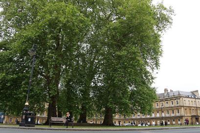 Bath - the Circus ... eine im letzten Jahrhundert angelegte Wohnsiedlung rund um einen Platz. Vier halbrunde Blocks bilden einen Kreis.