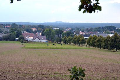 Blich vom Tanneberg bei Arnsdorf
