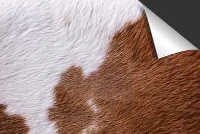 Koeienhuid Wit Rood Inductie Beschermer