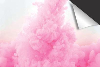 Roze Rook