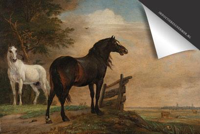 Twee paarden Inductie Beschermer