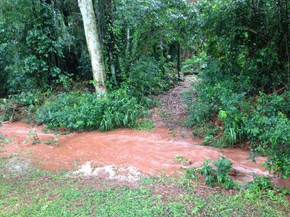 es regnet sintflutartig; schon bilden sich neue Bäche