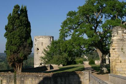 °Jardin du château de Chinon, INDRE-ET-LOIRE (37)   © Annick Maroussy