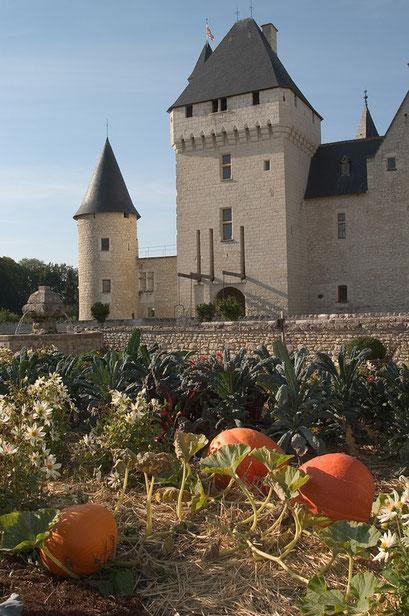 Jardin du château du Rivau, INDRE-ET-LOIRE (37)  © Annick Maroussy