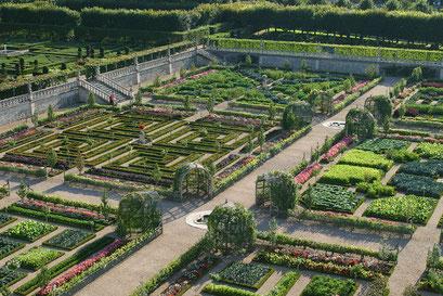 Jardin du château de Villandry,  INDRE-ET-LOIRE (37) © Annick Maroussy