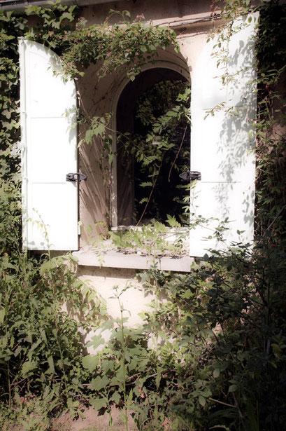 Fenêtre, Jardin de l'Île verte, Châtenay Malabry, (92 Hauts-de-Seine)