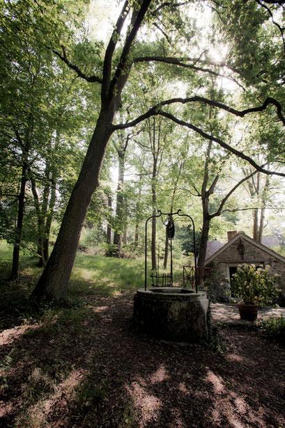 Puits, Jardin de l'Île verte, Châtenay Malabry, (92 Hauts-de-Seine)