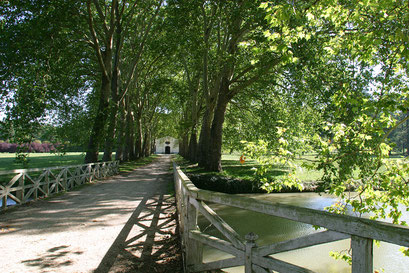 Domaine du parc de Richelieu, INDRE-ET-LOIRE (37)  © Annick Maroussy