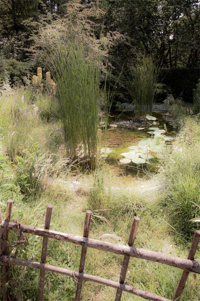 Bassin, Jardin de l'Île verte, Châtenay Malabry, (92 Hauts-de-Seine)
