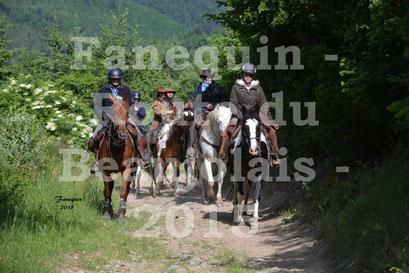 Route du Beaujolais 2015 - plusieurs cavaliers - samedi matin