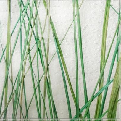 Echtes Gras - einlaminiert in Glas - Beargrass Dekor FE