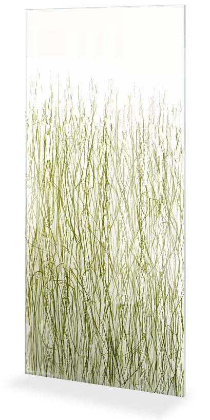 Lumicor - Natural - Seaweed Fade Panel