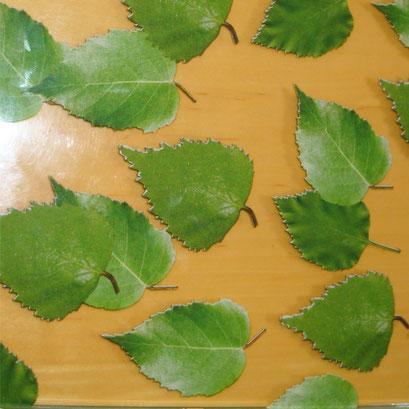 Birch Leaf Dekor FG